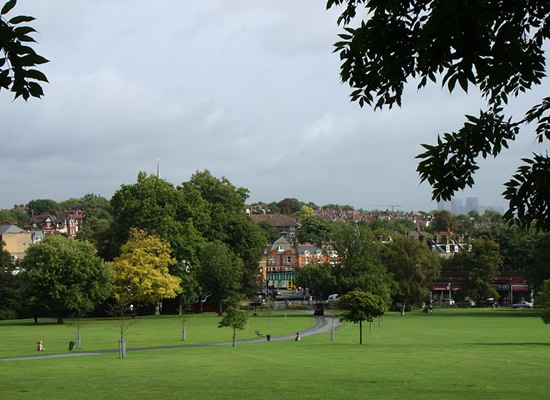 Herne Hill from Brockwell Park
